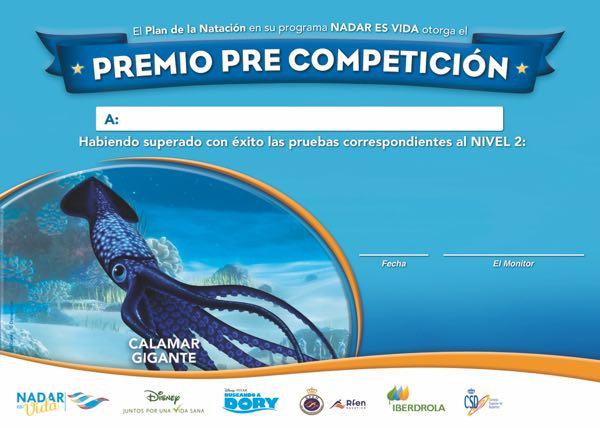 diploma_a4_precompeticion_nivel2_nadaresvida_tira