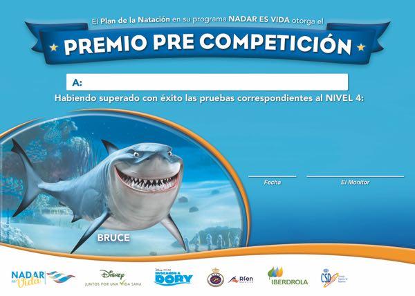 diploma_a4_precompeticion_nivel4_nadaresvida_tira
